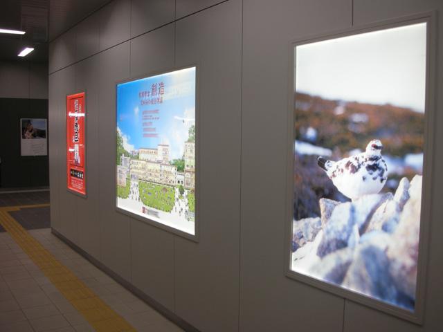 JR高岡駅 導光板3